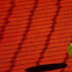 テニス-エースとウィナーの違い