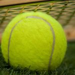 全豪公式テニスボール